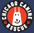 Chicago Canine